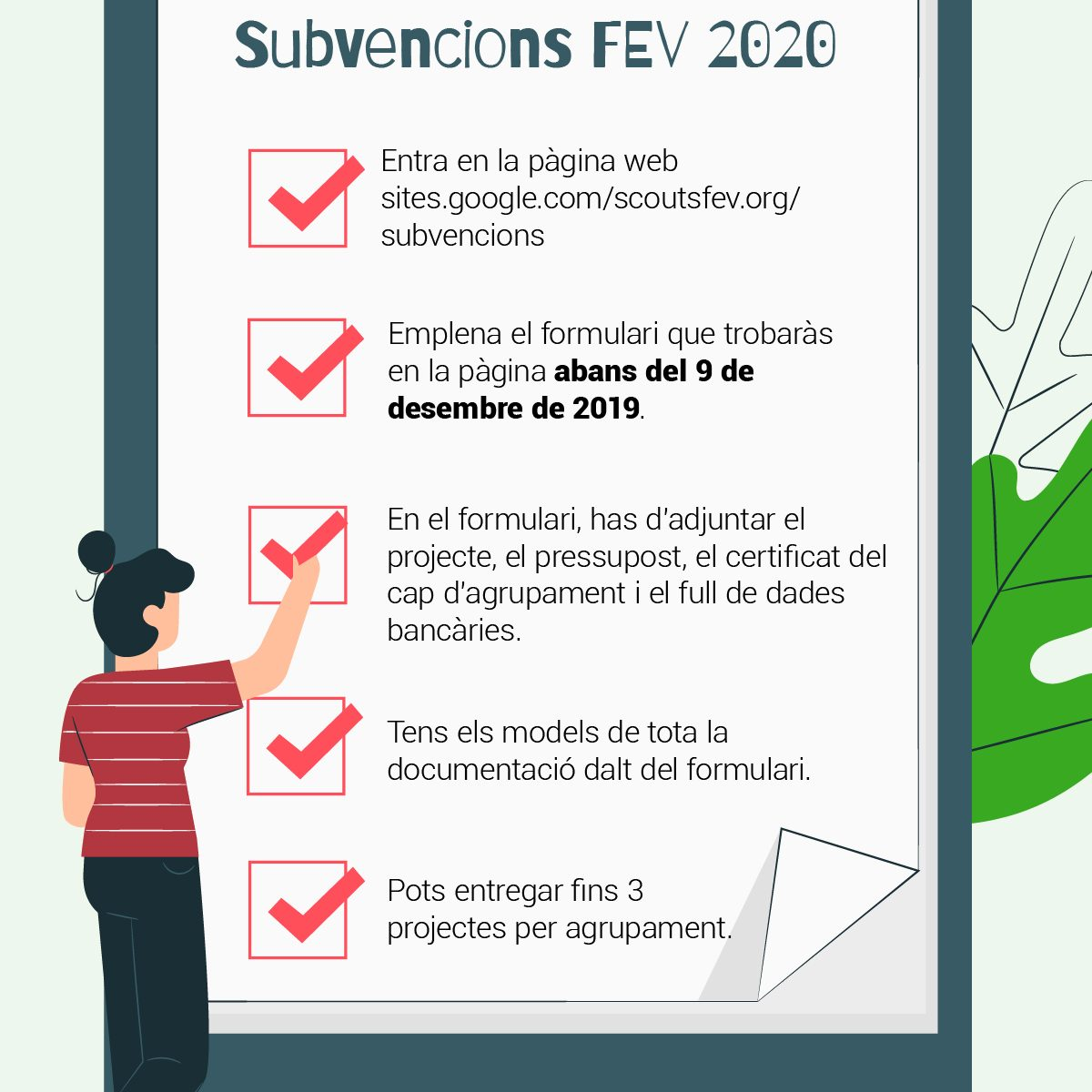 Subvenció FEV 2020