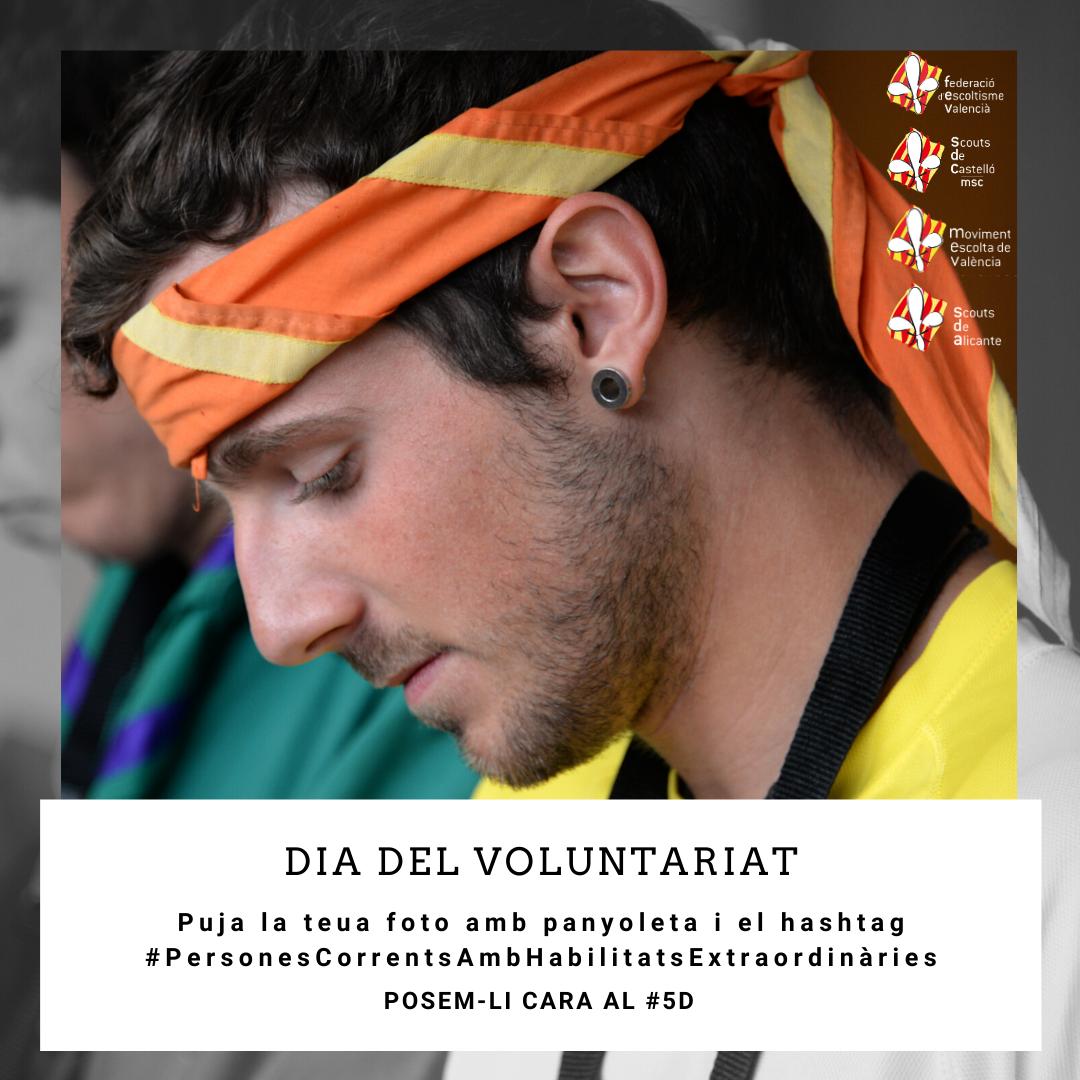 Dia del voluntariat